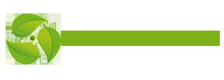 Looduse elujõud –  taimsed preparaadid, ürdid, aroomõlid – Domestra OÜ Logo